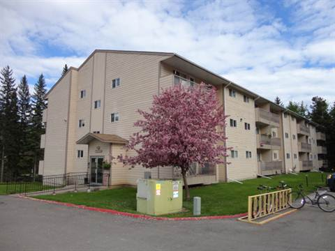 Sparwood 2 bedroom Condominium