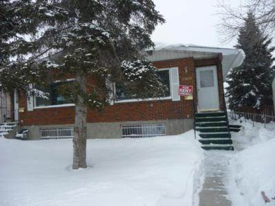 Edmonton West 2 bedroom Basement Suite For Rent