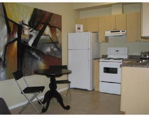 Fort Saskatchewan 1 chambre à coucher Appartement À louer