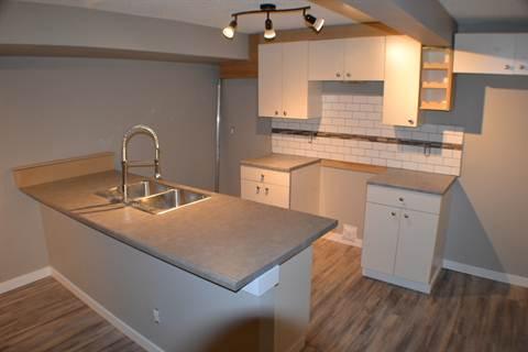 Edmonton West 2 bedroom Basement Suite For Rent