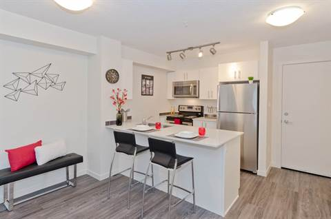 Calgary North East 1 bedroom Apartment For Rent