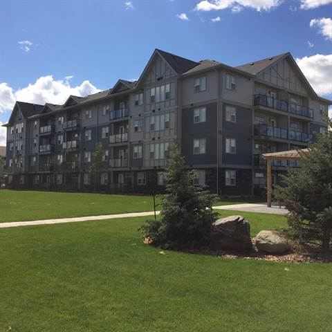 2 Bedrooms Edmonton South West Apartment For Rent Ad Id