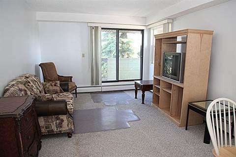 Grande Prairie 1 chambre à coucher Appartement À louer