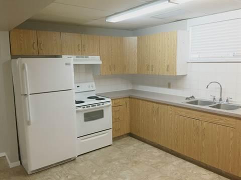 Edmonton South West 1 bedroom Basement Suite For Rent