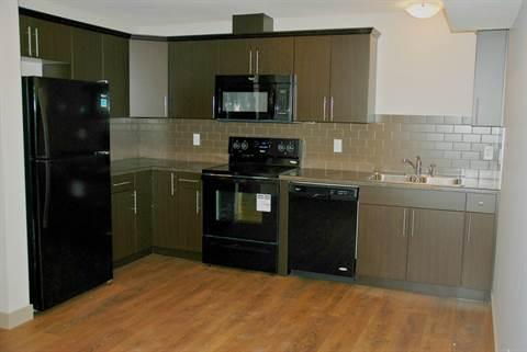 Edmonton North East 1 bedroom Basement Suite For Rent