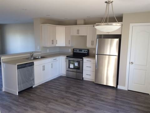 Winnipeg Central 3 bedroom Townhouse